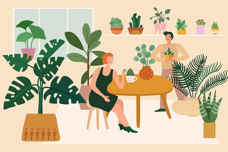 25 Manfaat Tanaman Hias untuk Dekorasi hingga Kesehatan