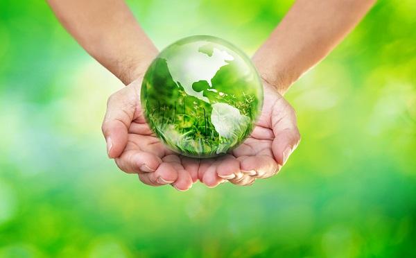 Tangan Memegang Kaca Globe Bumi dengan Bidang Rumput Hijau di Samping pada Latar Belakang Alam