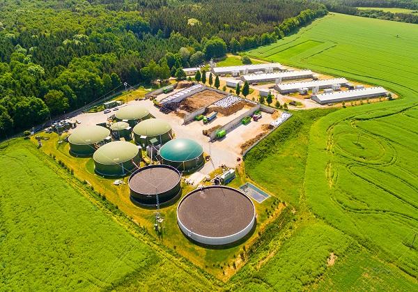 Pemandangan Udara di Atas Tanaman Biogas dan Pertanian di Ladang Hijau Sebagai Bentuk Energi Terbarukan dari Biomassa