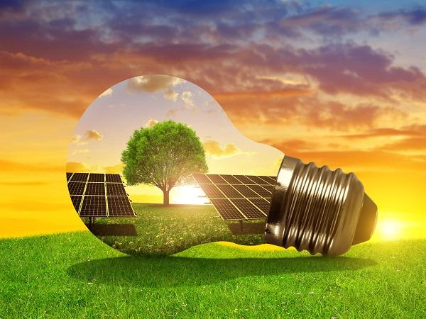 Energi Secara Alternatif Serta Sebuah Pohon di Dalam Bohlam atau Bola Lampu Sebagai Ilustrasi Aman dan Ramah Lingkungan