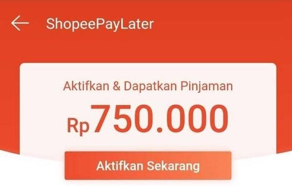 Tangkapan Layar Aplikasi Shopee dengan Fitur PayLater