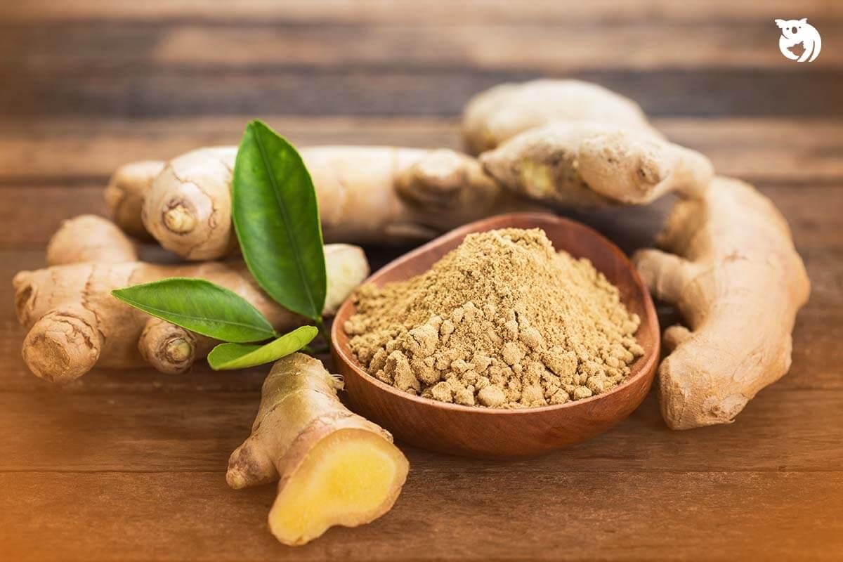 30 Manfaat Jahe untuk Kesehatan Tubuh, Sehat Alami!